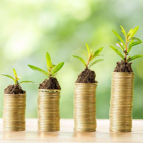 Moneyblog, Grüne Investments, Jahresempfang WohlstndsGeNO