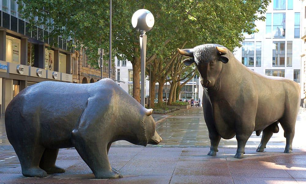 Bulle oder Bär